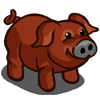 Duroc Pig-icon