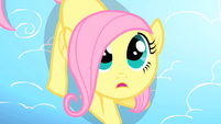Filly Fluttershy looking up S1E23