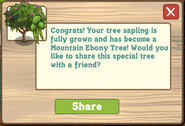 Mountain Ebony Tree Growth Message