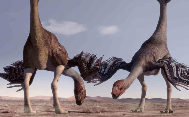 Gigantoraptor - BBC Planet Dinosaur Wiki