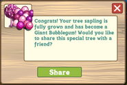 Giant Bubblegum Tree Message