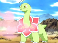 EP383 Meganium usando dulce aroma