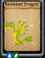 Seaweed Dragon.jpg