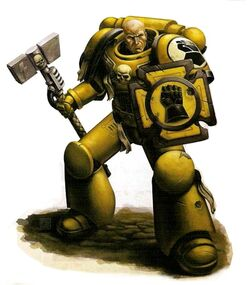 Imperial Fists Veteran Brother