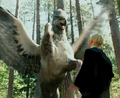 Buckbeak Malfoy.png