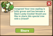 Giant Lucky Cookie Tree Message