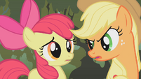 Applejack saving Apple Bloom S01E09