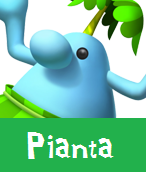 Pianta
