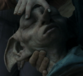 Luna closing Dobby's eyes.png
