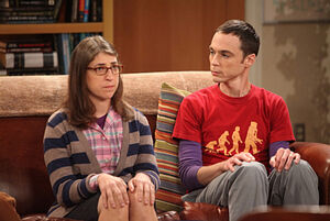 Sheldon amy