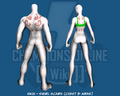 Skin - Swirl Scars (Chest &amp; Arms) - Back