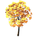 Ginkgo Tree-icon