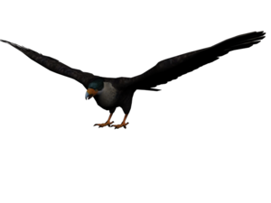 300px-Aguila_mexicano.png
