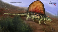 Dimetrodon Incisivus by Theropsida