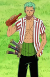 Zoro en Sabaody