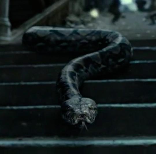 Nagini Harry Potter