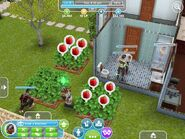 The sims freeplay11