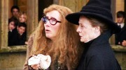 Professor Trelawney and McGonagall closeup