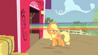 Applejack next to rainbow S01E25