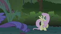 "Fluttershy cries ""Wait!"" when Rarity runs away S1E02"