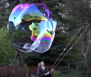 Edward a big bubble 20111124173254