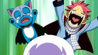 Reaction to Lisanna