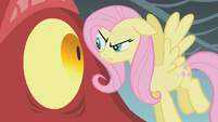 Fluttershy looks at the dragon in the eye S1E07