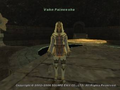 FFXI Sybil Guard Vahn Paineesha.png