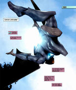 Batwing 010