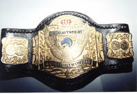 NWA Wildside Junior Heavyweight Championship