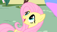 Fluttershy amazed by Philomena S01E22