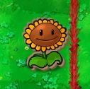 Cardboard Sunflower