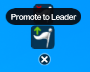 Promote To Leader
