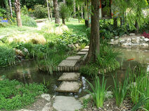 Giardino Botanico - Fondazione Andre Heller - Gardone Riviera - pond - stepping stones