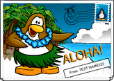 Aloha Postcard