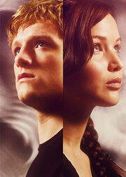 Katniss-and-Peeta-the-hunger-games-27740170-500-700
