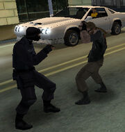 SWAT-criminal fight