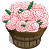 Snow Carnation Bushel-icon