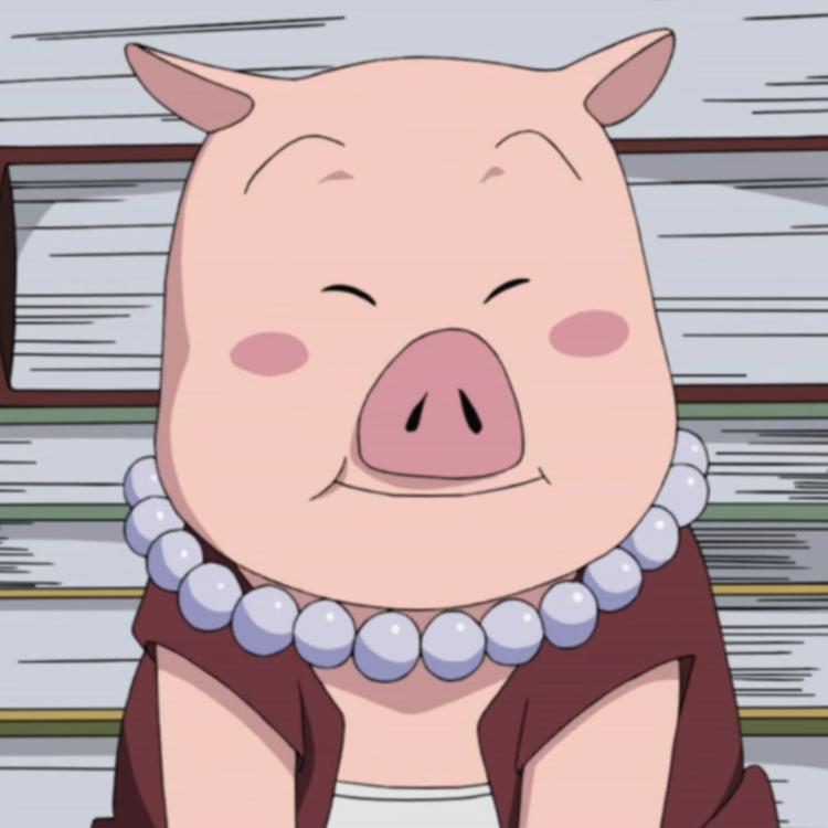 [Regra] Animais Shinobi Tonton02