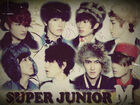 Super-junior-m-perfection