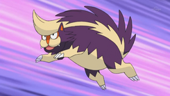 Jupiter Skuntank