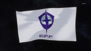 Earth fereral forces flag