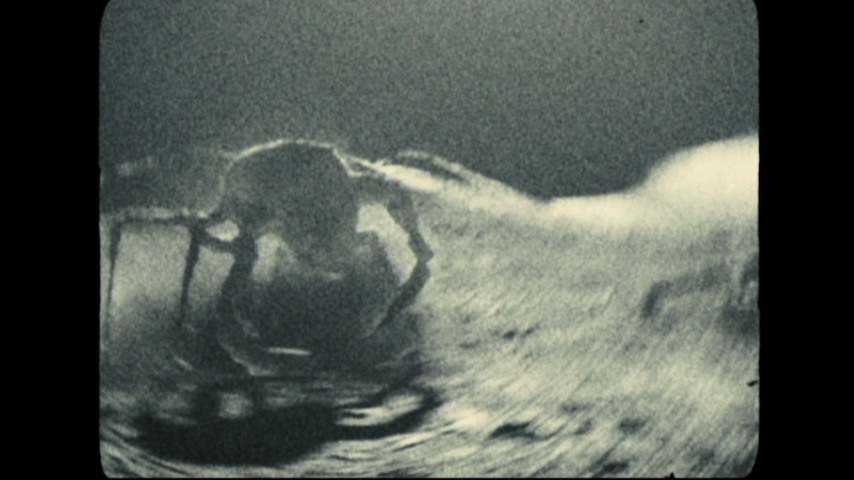 space rock movie planet - photo #12