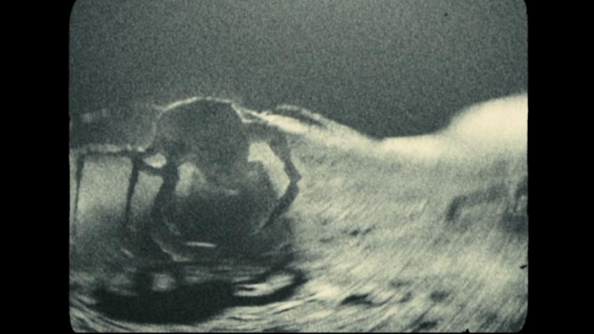 aliens from apollo 18 -#main