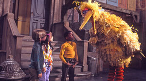 SesameStreet-EarlyBigBird