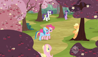 Closing in on Applejack in the cherry orchards S2E14