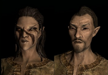 Bosmer (Skyrim)