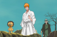 Kon pep talks Ichigo