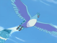 Noland Articuno