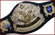 Championship Belt